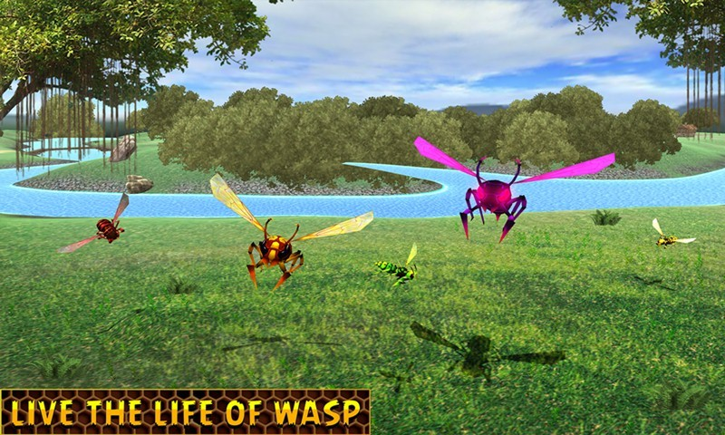Wasp Survival Simulator