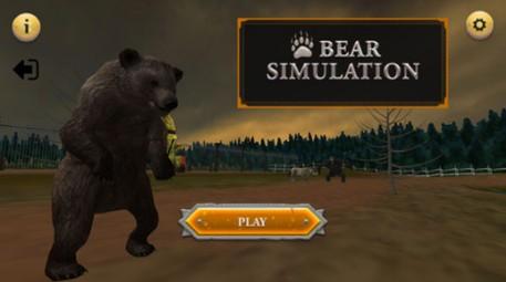 Wild Angry Animal Bear simulator 3d