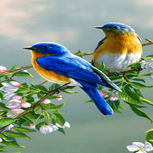 Cute Blue Birds LWP