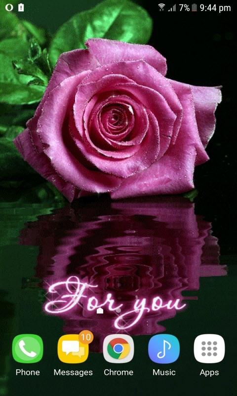 Purple Rose Reflection LWP