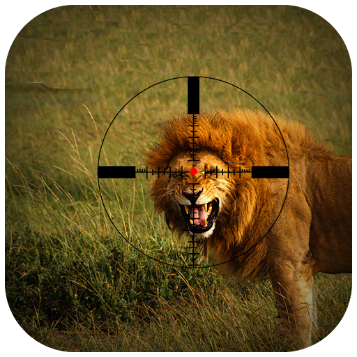 Lion Hunting in Jungle