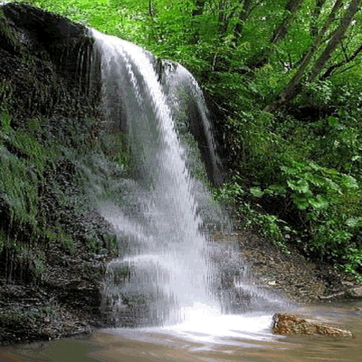 Forest Waterfall Live Wallpaper