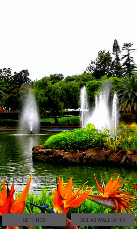 Fountains Beauty Live Wallpaper