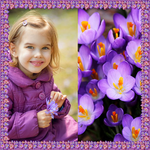 Crocus Photo Collage
