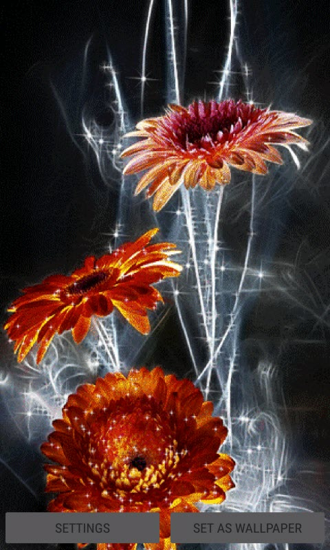 Lighting Flowers Live Wallpaper
