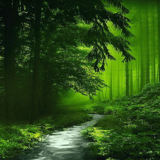 Nature Green Forest LWP
