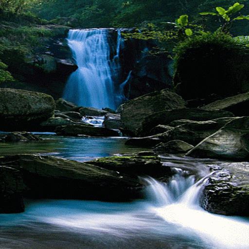 Black Rock Waterfall LWP
