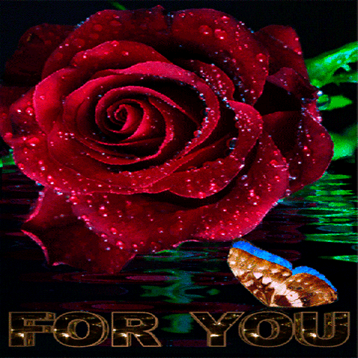 Blooming Rose Butterfly LWP