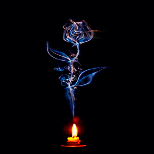 Candle Flower Live Wallpaper