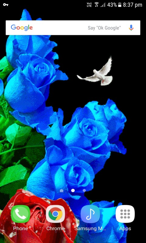 Color Changing Roses LWP