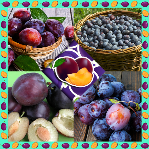 Plum Collage