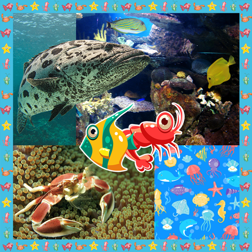 Sea Creatures Collage