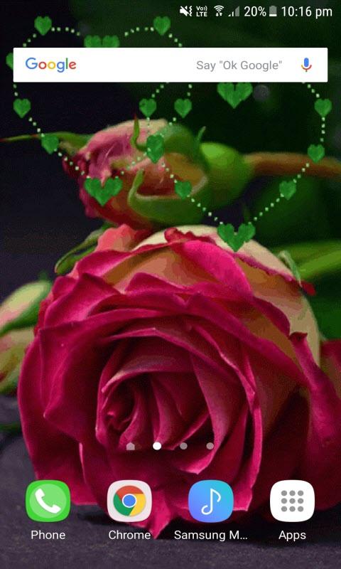 Green Heart Rose LWP