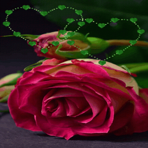 Green Heart Rose LWP