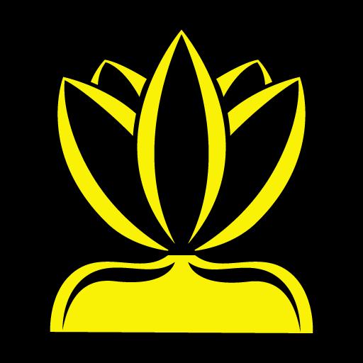 Lotus - Social Media Suite