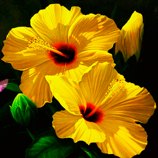 Yellow Flowers LWP