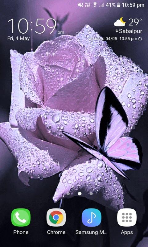 Dewy Purple Butterfly LWP