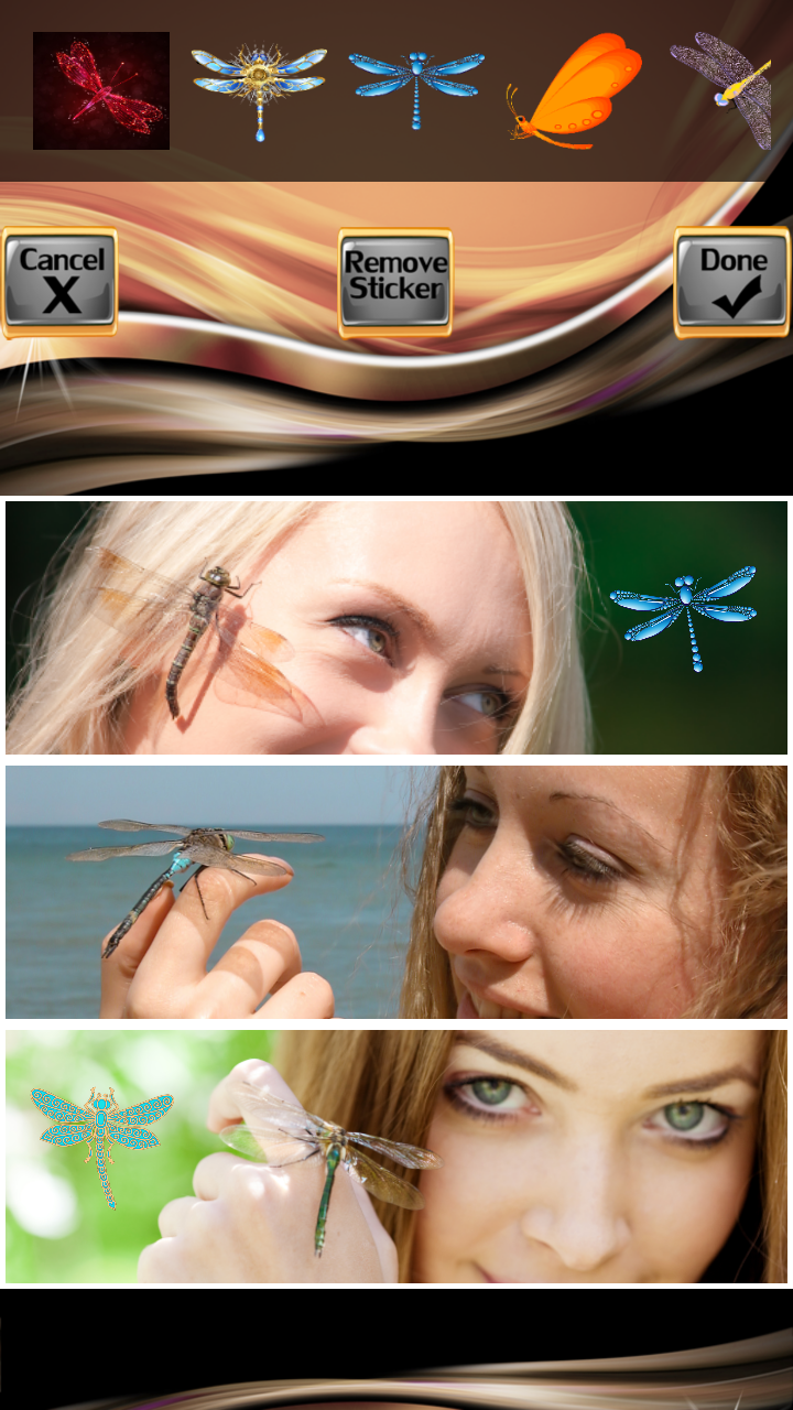 Dragonfly Photo Collage