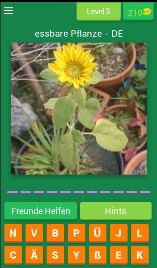 Essbare Pflanzen - Deutsch