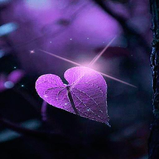 Magical Purple Leaf LWP