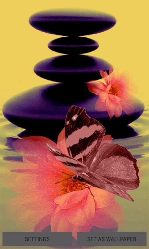 Pink Flower Butterfly LWP