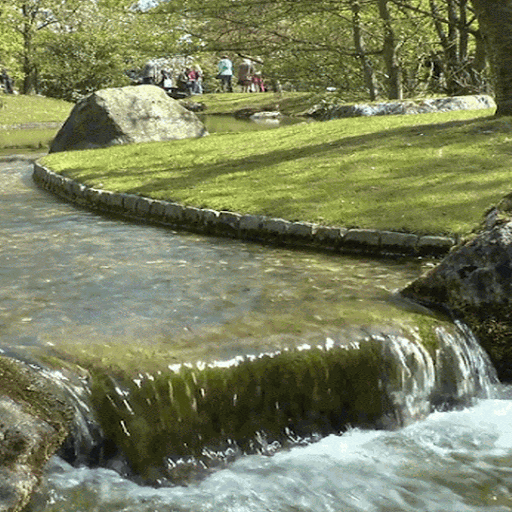 Garden Water Live Wallpaper