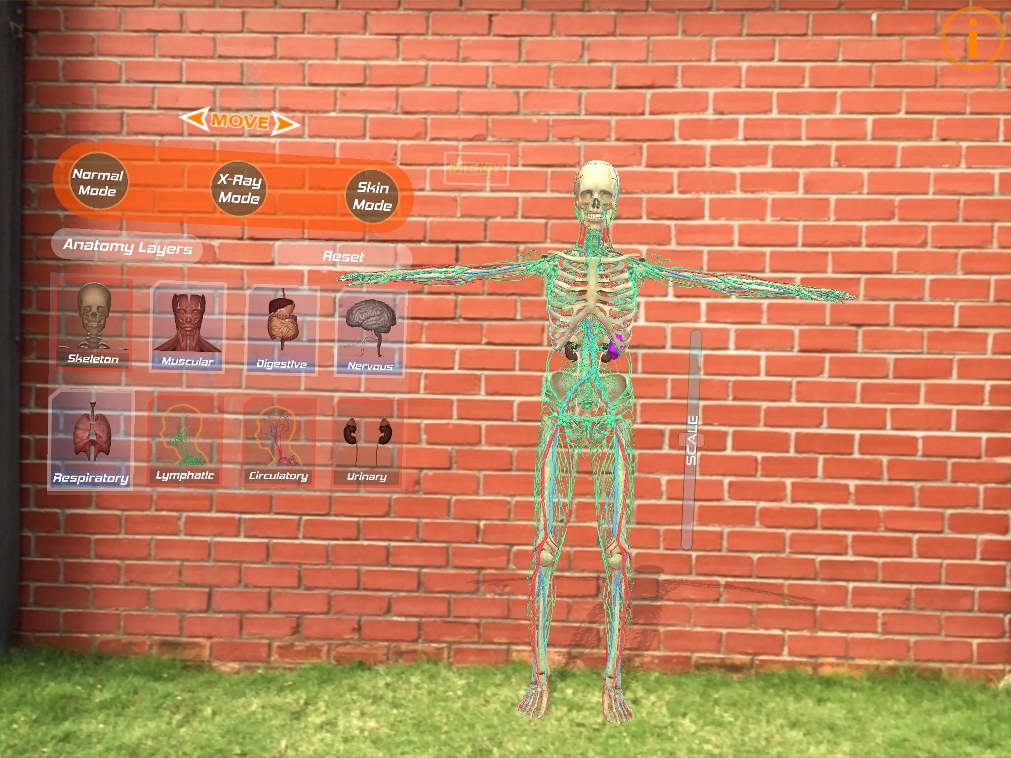 Human Anatomy 4D Mixed Reality