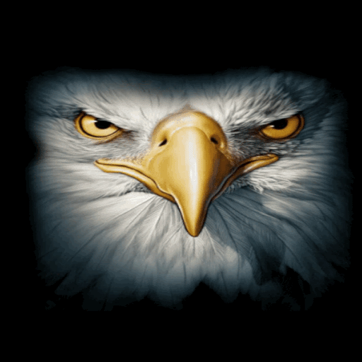 Eagle Face Live Wallpaper