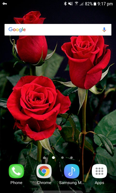 Lovely Red Roses LWP