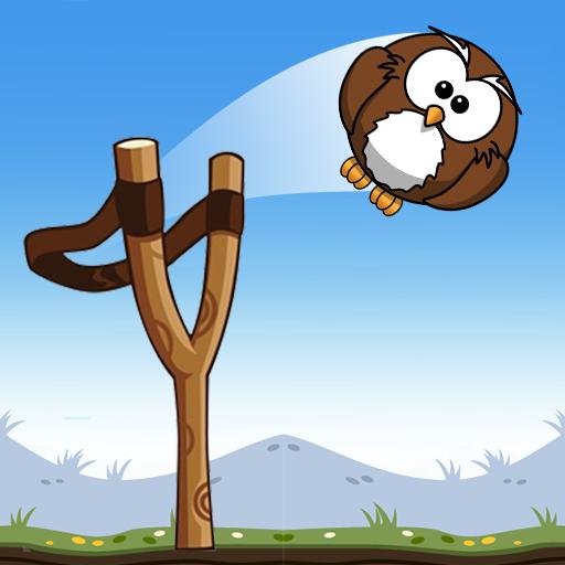 Shot Owl