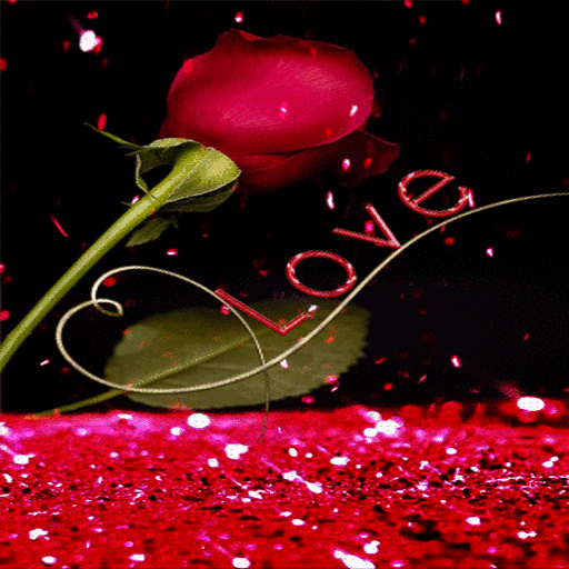 Love Rain Live Wallpaper