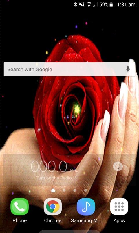 Rose On Hand LWP