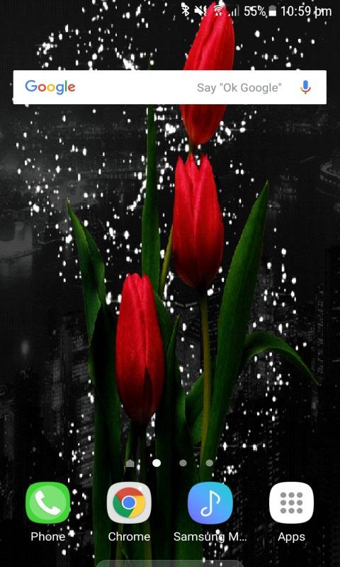 Tulip Flower Magic LWP