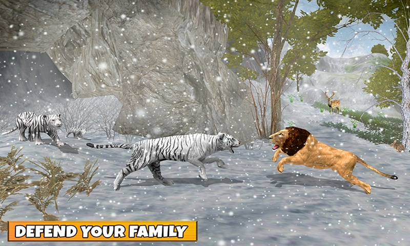 Snow Tiger Family