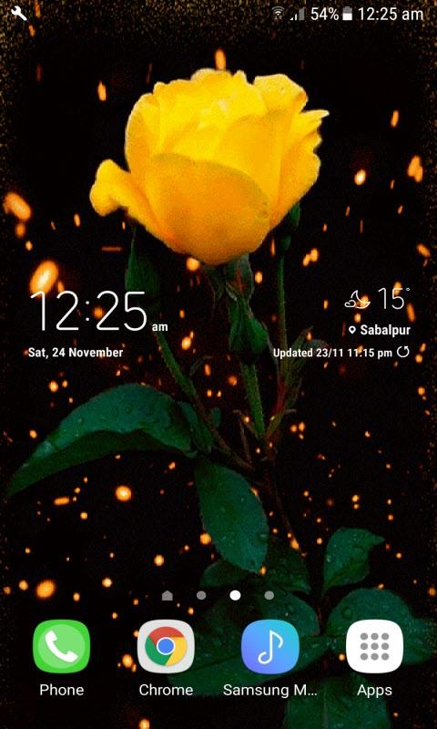 Yellow Shine Rose LWP