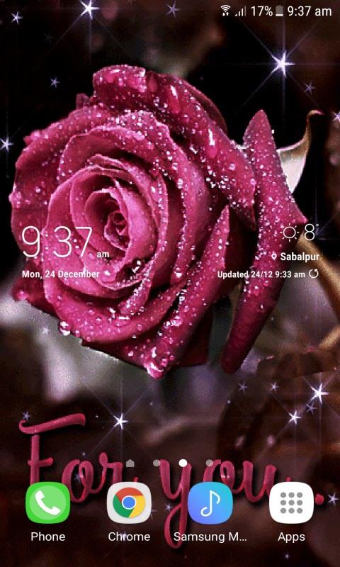 Snowy Shine Rose LWP