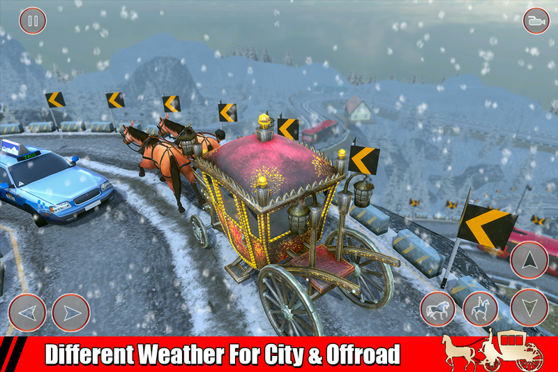 Horse Taxi City & Offroad Transport