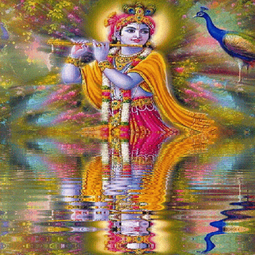 Krishna Reflection Live Wallpaper