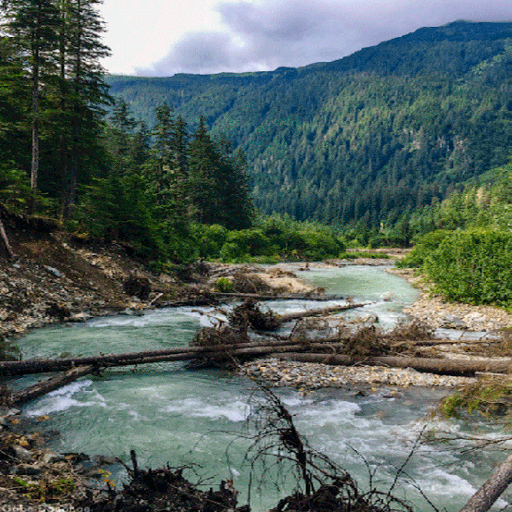 Hilly Forest River LWP