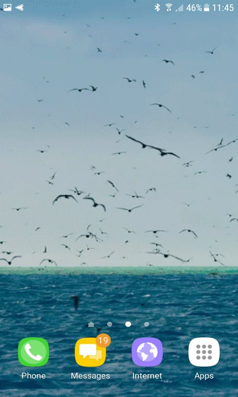 Ocean Birds Live Wallpaper