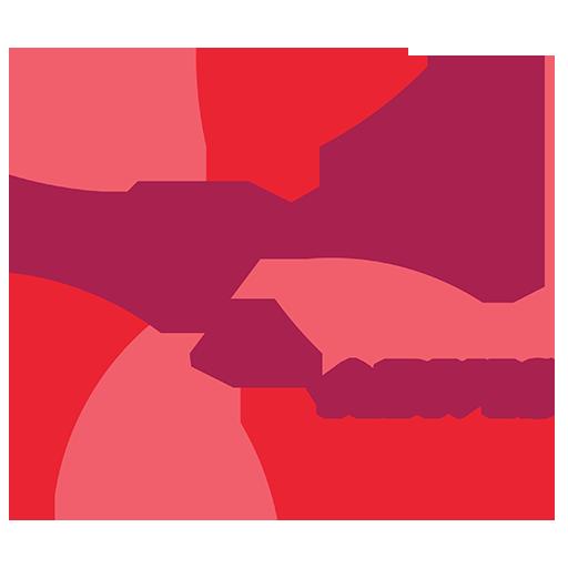 Zarvis