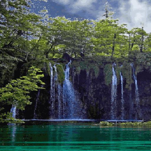 Nature Jungle Waterfall LWP