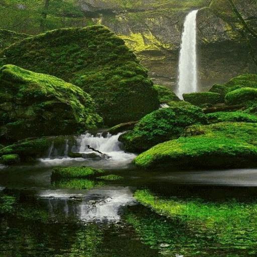 Green Rocks Live Wallpaper