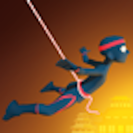 Ninja Rope Swing