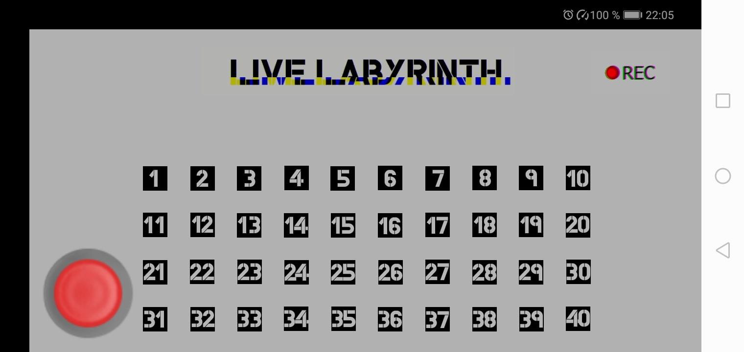 Live Labyrinth