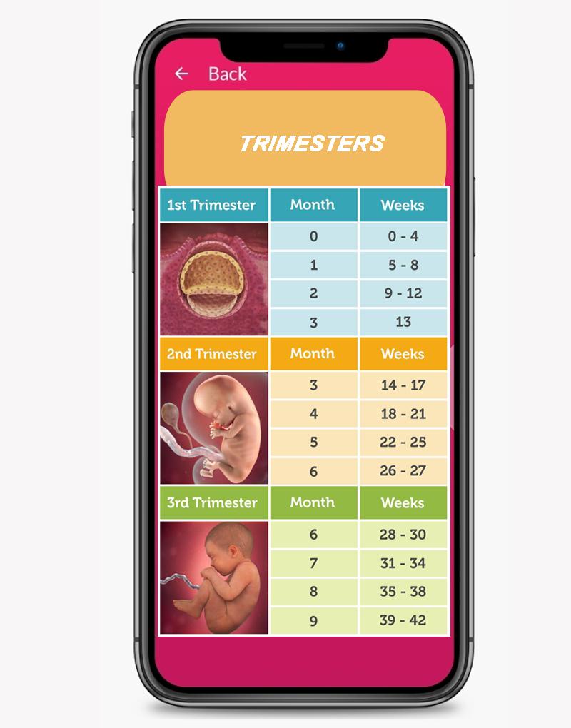 Baby Due Date Countdown - Pregnancy - Calculator